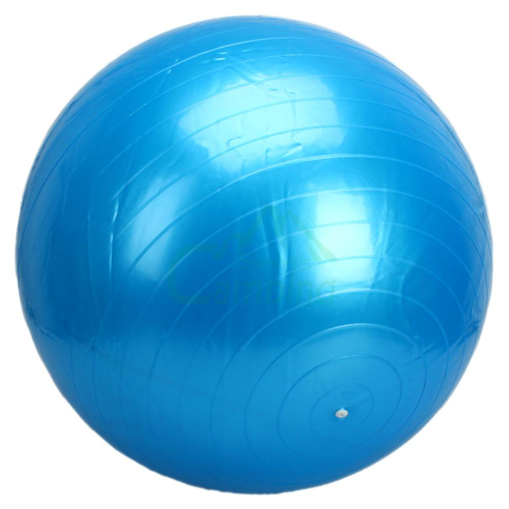 Exercise Ball 75cm Anti Burst: 75cm Anti-Burst Body Ball Durable Balance Fitness Yoga